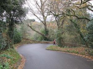 La Route des Camps, St Brelade